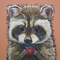 Raccoon Callie Fine Art Print