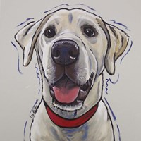 Yellow Lab Hank Fine Art Print