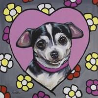 Chihuahua Coco Fine Art Print