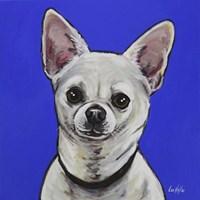Chihuahua Pepe Fine Art Print