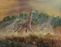 African Spirit Fine Art Print