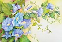 Trailing Vine Morning-Glories Fine Art Print