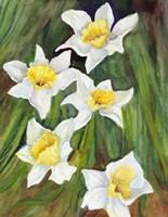 Daffodils with Nodding Heads Fine Art Print