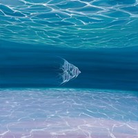 Blue Angels Blue Sea Fine Art Print