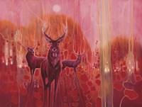 Red Magic Fine Art Print