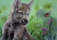 Wolfcub 1 Fine Art Print
