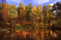 Autumn Reflections Fine Art Print