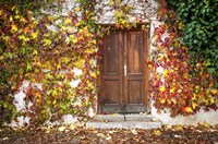 Autumn Wooden Doorway in Prague Fine Art Print