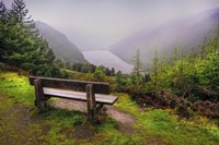 Bench Over the Upper Lake in Glendalough Ireland Fine Art Print