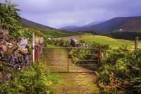 Gates on the Road at Wicklow Hills Ireland Fine Art Print