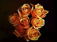 Bouquet Of Yellow Roses Fine Art Print