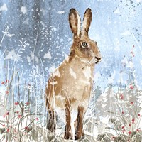 Winter Hare Fine Art Print