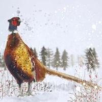Christmas Pheasant Fine Art Print