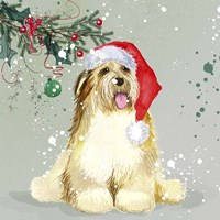 Dog In Christmas Hat Fine Art Print