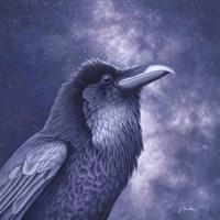 Raven Air Fine Art Print