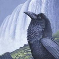 Raven Water Fine Art Print