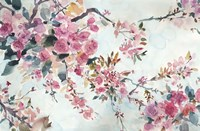 Cherry Blossoms Morning Fine Art Print