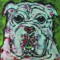 Bulldog Green Fine Art Print