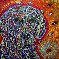 Color Dog Fine Art Print