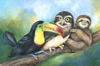 Toucan Owl Sloth Fine Art Print