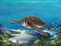 Roaming Reef Fine Art Print