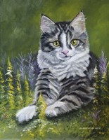 Bandit The Cat Fine Art Print
