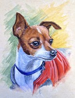Chihuahua With Red Coat Fine Art Print