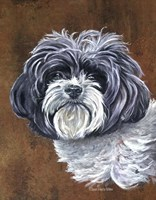 Daisy The Dog Fine Art Print
