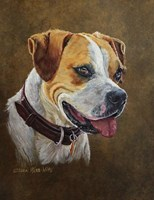 Dog 1 Buddy Boxer Fine Art Print