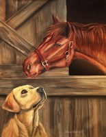 Labrador Retriever And Horse Barn Fine Art Print