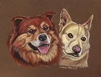 Mix Breed Dogs Fine Art Print