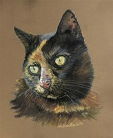 Normy The Cat Fine Art Print