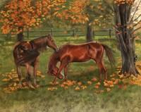 Autumn Pastures Horses Fine Art Print
