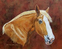 Roxanne Draft Horse Fine Art Print