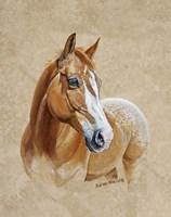Ruger Horse Fine Art Print