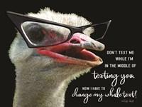 Ostrich Don't Text Me Fine Art Print