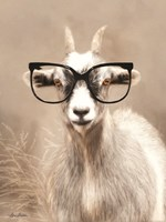 See Clearly Goat Fine Art Print