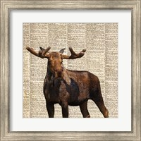 Country Moose I Fine Art Print