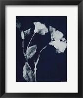 Floral Whisper In The Dark II Fine Art Print