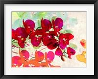 Orchidreams Fine Art Print