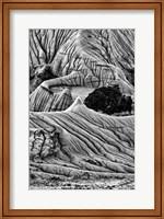 Unusual Erosion Formations In Makoshika State Park (BW) Fine Art Print