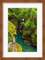 Avalanche Creek, Glacier National Park, Montana Fine Art Print