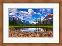 Driftwood And Pond, Saint Mary Lake, Glacier National Park, Montana Fine Art Print
