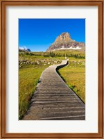Hidden Lake Trail At Logan Pass, Glacier National Park, Montana Fine Art Print