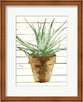 Wood Plant Pot Fine Art Print