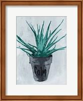 Calm Plant Fine Art Print