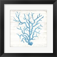 Coral On Wood Fine Art Print