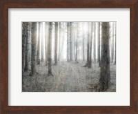 Forest Dream Fine Art Print