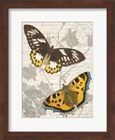 Butterfly Travel 1 Fine Art Print