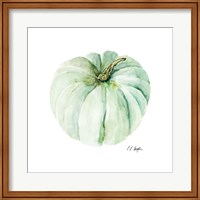 Mint Pumpkin Fine Art Print
